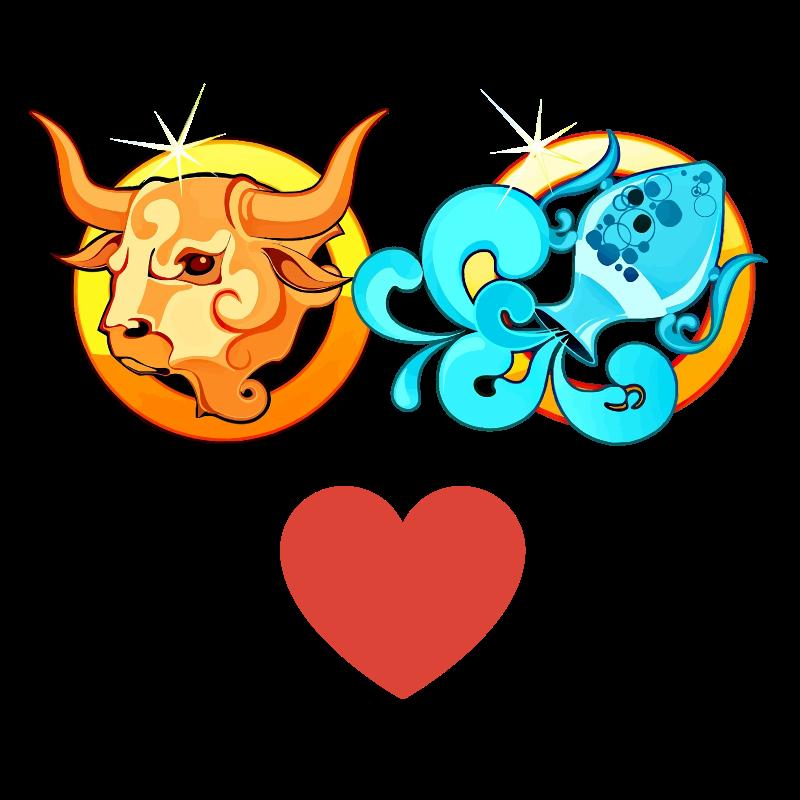 Compatibilidad de amor: Mujer Tauro y Hombre Acuario