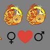 Compatibilidade    amorosa Capricórnio mulher e Capricórnio homem