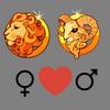Compatibilidade    amorosa entre a mulher de Leo e o homem de Aries